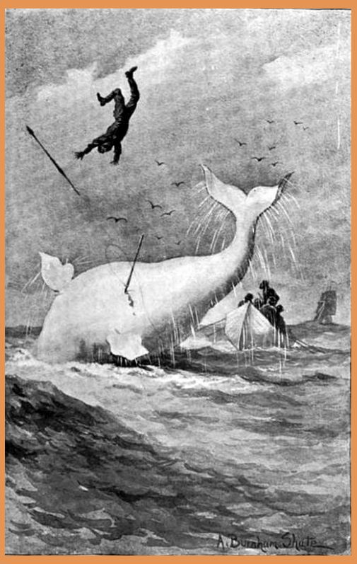 image from the original book of Moby Dick
